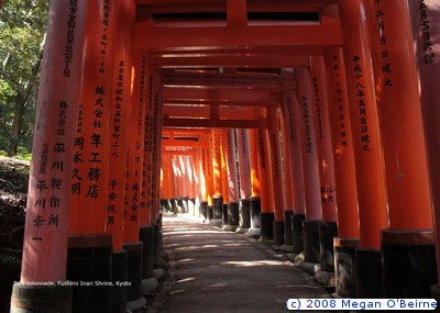 06,Torii colonnade, Fushimi Inari Shrine, Kyoto