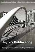 James Joyce Bridge, Dublin, photograph (c) Megan O'Beirne 2005