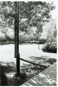 Photograph of Square James Joyce, Paris, France (c) 2003 Megan O'Beirne