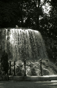 Fountain in Iveagh Gardens (c)2004 Megan O'Beirne